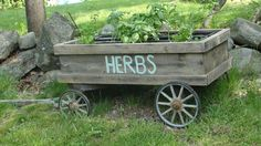 creative herb garden ideas - Google Search