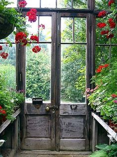 Hanging Geraniums in a potting shed/greenhouse. What about this using our own salvaged doors/windows. it's a summer folly full of plants! Garden Doors, Garden Gates, Garden Sheds, Garden Entrance, Dream Garden, Home And Garden, Garden Modern, Garden Cottage, The Secret Garden