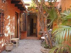 One of my favorite places - San Miguel de Allende house lime tree
