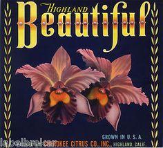 Highland Beautiful, Cherokee Citrus Company; Highland, San Bernardino County, California