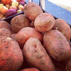 #sweetpotatoes & #onions in #Queens! #farmersmarketnyc Forest Hills Greenmarket