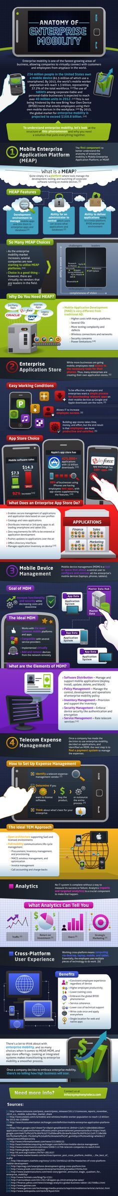 Infographic: Mobile Enterprise Application Platform (MEAP) - how enterprises can customize, control, and deploy mobile apps to their workforce From SymphonyTeleca Enterprise Application, Mobile Application Development, Design Development, Best Mobile, Mobile Marketing, Information Technology, Virtual Assistant, Things To Know, Social Media