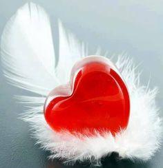 Corazón y Pluma...