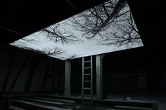 Youki Hirakawa - Vanished Tree - Barn / 2013.  Video Installation / 1 Projection and 1 Monitor / Silent / Full HD / 10min Loop. Akademie Schloss Solitude, Stuttgart