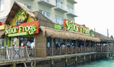Senor Frogs, Bahamas:P Bar and grill, party place, Nassau. Senor Frog's (Bahamas) Woodes Rodgers Walk, Nassau, New Providence Island. This is where I sang a Madonna song and got a free Bahama Mama drink! ..... and a lap dance lol -Ashley Turman