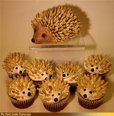 Funny food Photos - Hedgehog Cupcakes - Cheezburger