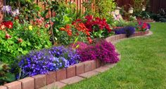 Front Yard Пейзаж, 6 подражать Идеи для Backyard Ландшафтный на бюджет: дворовые идеи ландшафтного дизайна на бюджете