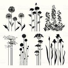 Plantes collection printemps stock vecteur libres de droits libre de droits