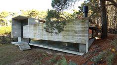 BAK arquitectos construct pedroso house in a pine forest - designboom | architecture