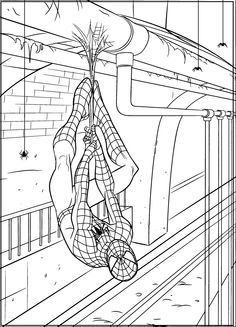 1000+ images about Spider-Man Coloring Pages on Pinterest ...