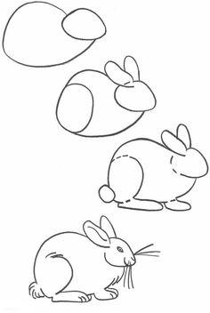Zeichnen Lernen Fur Anfanger Einen Hasen Malen Dekoking Com