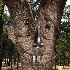 Used wine barrel rings for glasses, nose, mouth & buck teeth with braces. Added from Home Depot 2 Solar garden lights for eyes. Wine Barrel Rings, Tree People, Tree Faces, Tree Trunks, Junk Art, Design Museum, Back Gardens, Fairy Houses, Trees To Plant
