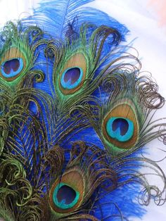 Masquerade Feathered Fan BRIDAL