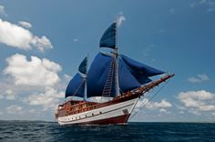 Phinisi(Pinisi) Boat. http://3.bp.blogspot.com/-UUutiQakDsE/Ts_ZXaHRWdI/AAAAAAAACNc/HPYzyxn5QK0/s1600/Phinisi+cover.jpg