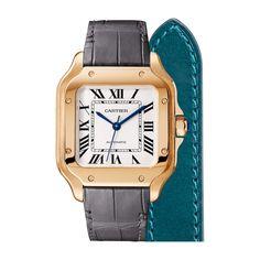 Santos de Cartier ref. WGSA0012 #cjcharlesjewelers #cartier #luxurywatches