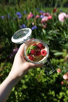 Perfect picnic pots with raspberries, dulce de leche cream and Bastogne cookies. Raspberries, Pots, Picnic, Sweet Treats, Cookies, Cream, Outdoor Decor, Panna Cotta, Creme Caramel