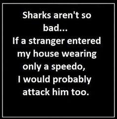 Sharks rule…