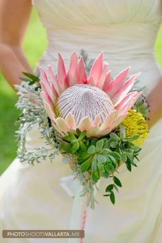 mexican wedding bouquet, Western desert wedding, Flor Mimo Florist