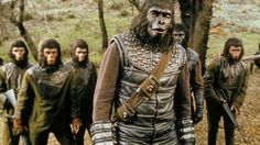 New Movies 2016 - Action, Adventure, Sci-Fi - Hight Rating and Hight Goo. Chara, Airsoft, New Movies 2016, Plant Of The Apes, Science Fiction, Monkey Costumes, Den Of Geek, Canada Images, Chimpanzee