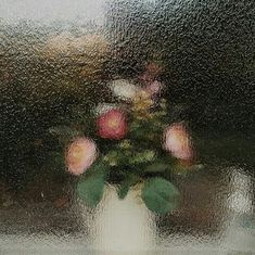 blurry, right? i need glasses. i need clarity. Arte Peculiar, Sully, Lorde, At Least, Artsy, In This Moment, Beautiful, Abstract, Flowers