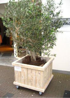 plantenbak steigerhout