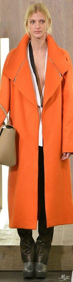 Fall 2015 Ready-to-Wear Amanda Wakeley + c