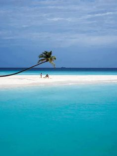 Maldives - so can't wait until October f