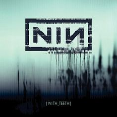 Nine Inch Nails. One of my favorite NIN albums. Saw them tour this is was fantastic.
