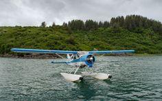 ©Robert O'Toole Floatplane image Sigma C and Nikon at… Nikon D500, C 18, Photography Gear, Focal Length, No Time For Me, Alaska, Behind The Scenes, Coastal, Wildlife