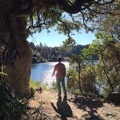 ".... oh I.................... I wanna be with you everywhere.... ""Everywhere"" by @FleetwoodMac #roadtrip #playlist #mixtape #musicalMonday #dog #malteseshihtzu #mansbestfriend #dogwalk #matchingoutfits #LakeTarawera #Rotorua #NewZealand #itsTime2Go!"