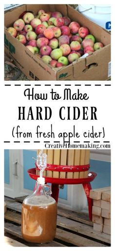 Easy hard cider recipe that anyone can make. Learn how to make homemade hard cid… Easy hard cider recipe that anyone can make. Learn how to make homemade hard cider from fresh apple cider. One of my favorite fall recipes! Homemade Wine Recipes, Homemade Cider, Homemade Alcohol, Homemade Liquor, Making Hard Cider, Making Apple Cider, Hard Apple Cider, Hard Cider Recipe, Apple Cider Wine Recipe