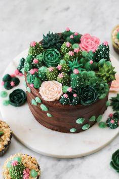 Buttercream Succulent Cake - Cakes, Cupcakes and Cookies - Best Food Pretty Cakes, Cute Cakes, Beautiful Cakes, Amazing Cakes, Amazing Birthday Cakes, Simple Birthday Cakes, Sweet Cakes, Sour Cream Chocolate Frosting, Sour Cream Cake