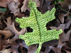 Pin Oak Leaf Knitting Pattern by Linda Dawkins