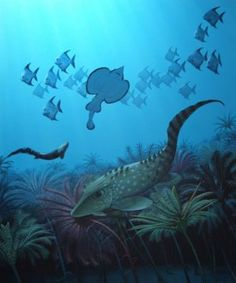 After the Hangenberg mass extinction, small fish dominated the oceans while larger fish mostly died out.