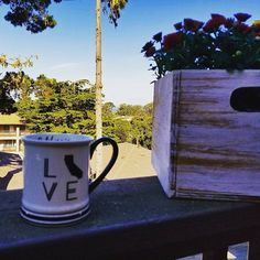 Finally, a day to enjoy our new place ❤ We sat on our front deck and sipped coffee while taking in the gorgeous sunny day, the tranquil ocean, our new flowers and plants, and the Monarch butterflies flying over our heads. The picture doesn't do today justice. Today was a simple and perfect day ❤🌞🍵💑🌅🦋🍃 #pacificgrove #sundaymorning #simplepleasures #enjoytheonesyoulove #livelovecalifornia #montereylocals #pacificgrovelocals- posted by Adriana https://www.instagram.com/adrimoody. See more…