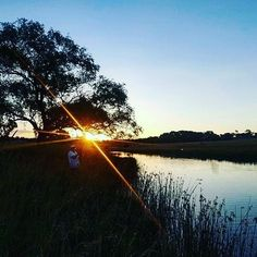 Lazy afternoons on the river Photo by @jawsy11 #gleninnes #gleninnesnsw #gleninneshighlands #visitnsw #newsouthwales #visitaustralia #seeaustralia #australia #iloveaustralia #travelaustralia #travelphotography #travel #exploreaustralia #australiancountry #countrytown #countryside #countrybeauty #instacountry #instatravel #travelgram #photography #explore