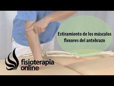 Estiramiento de los músculos flexores del antebrazo.   Fisioterapia Online