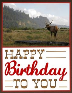 69d214167ef7298fc61a11bbeb6b190e happy birthday man birthday greetings happy birthday cowboy ~°\u2022°\u2022☆\u2022《ocassions & salutations