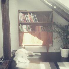 High-glosss bookshelf (probably part of wall unit), bought in vintage furniture store in Kraków, Poland. / Photo by @Tomasz Jurecki #wysokipolysk #fleastyle #vintagehome #bookshelf