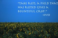 """Take rest; a field that is rested gives a bountiful crop."" ~Ovid"