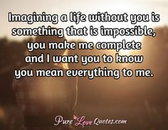 Imagining a life without you is something that is impossible, you make me complete and I want you to know you mean everything to me.