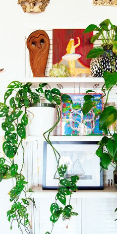 DRAMATIC AND GORGEOUS SPILLER PLANTS! GET THE LOOK <3