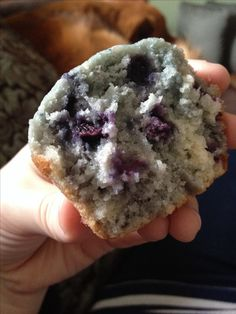The Sweetest Blueberry Muffins - Cakes, cupcakes, muffins and doughnuts - Blueberry Recipes Best Blueberry Muffins, Blueberry Desserts, Blue Berry Muffins, Blueberries Muffins, Blueberry Cupcakes, Dunkin Donuts Blueberry Muffin Recipe, Blueberry Recipes Easy, Blueberry Cream Cheese Muffins, Banana Nut Muffins