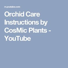 Orchid Care Instructions by CosMic Plants - YouTube