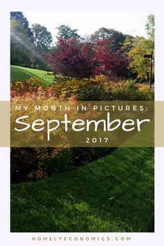 My month in pictures: September 2017. Here are some of the photographs that stood out to me in the last month, that illustrate my September.