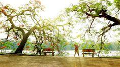 Sunny morning (2) by Rùa Đẹp on 500px