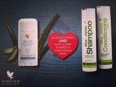 Aloe Vera, Shampoo, Conditioner, Personal Care, Bottle, Latin America, Central America, Viajes, Self Care