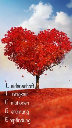 Definition von Liebe!