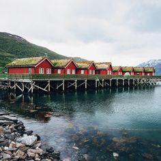 Tous les détails de notre road trip mémorable sur les routes de Norvège du nord en été, Tromso, Cap Nord, safari oiseau, randonnée et soleil de minuit!