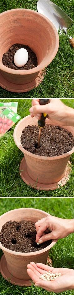 Planting a vegetable garden in pots - Place raw uncracked egg in bottom.  As it decomposes, it naturally fertilizes your mini- veg garden.  Do outside of course!!!